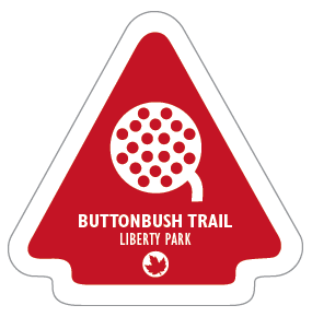 Buttonbush Trail Sticker